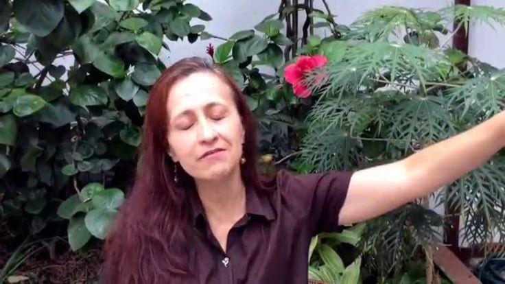 """Quien es o qué es mi """"Tierra Prometida"""" ? Video 004"""