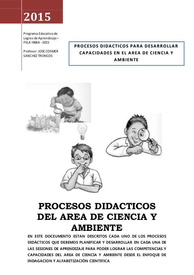 2015 Programa Educativode Logros de Aprendizaje– PELA HBBA - 2015 Profesor.JOSECOSMER SANCHEZTRONCOS PROCESOS DIDACTICOS D...