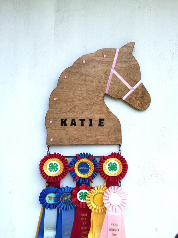 Customized Horse Show Ribbon Display/Award, 2 Ribbon Tiers