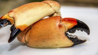 Reheating Frozen Crab Cakes