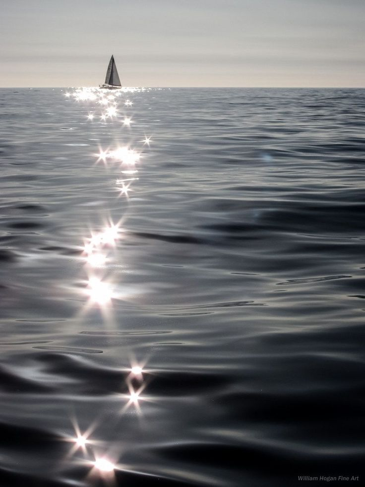 Specular Reflections surround Sailboat, Santa Monica Bay, 2011.  Photographed at sea aboard my sailboat Nomad, on an unseasonably warm mid-winter day.  The water was inky black and smooth because of the light offshore winds that had brought warm weather from the inland deserts. The surface of the sea sparkled and glittered all afternoon changing as the sun moved slowly across the sky. Light zephyrs and gentle swells passed over the the sea as sunlight played across it  So I left the…