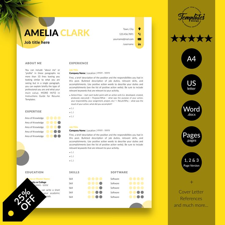 Creative resume template for word best professional
