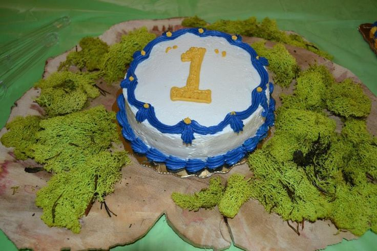"""Where the Wild Things Are - Free smash cake from Publix when you order a """"Happy First Birthday"""" sheet cake"""