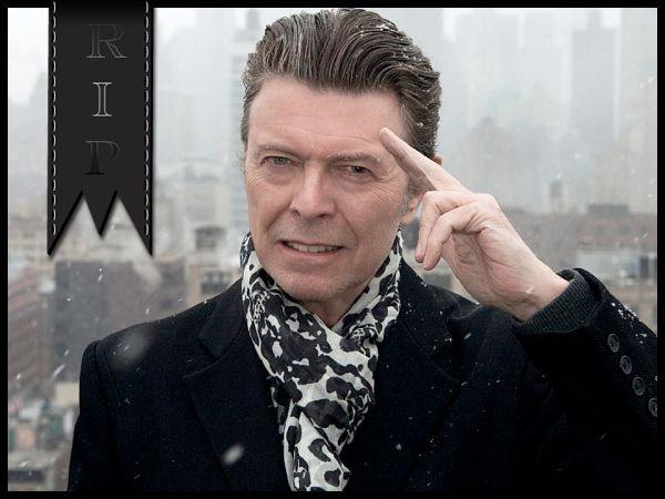 [Todesmeldung] David Bowie ist tot - Bloodsuckerz Board