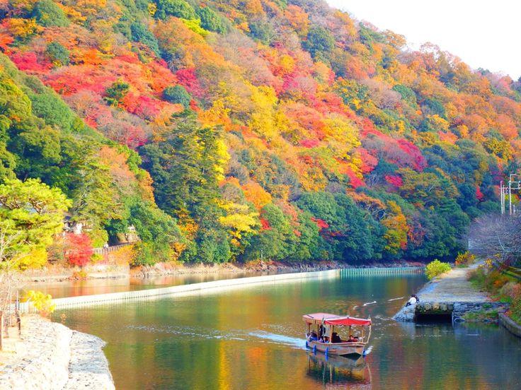 錦絵のように素晴らしい景色を訪れませんか京都の紅葉名所宇治編