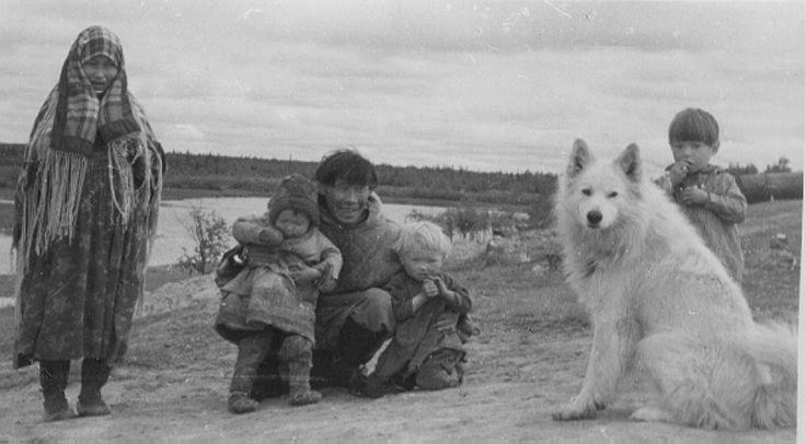 ездовые собаки история: 13 тыс изображений найдено в Яндекс.Картинках