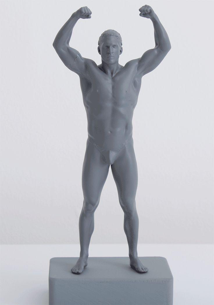 The 100+ best Anatomy images on Pinterest | Human anatomy, Anatomy ...