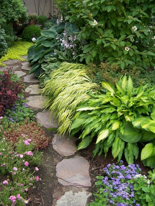 """Planting combos from """"BlondeGardener"""" on Rate my Space.  These gardens are Ah-MAZE-ING!"""