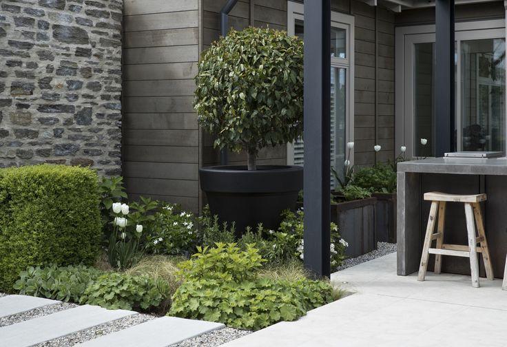 suzanne turley landscapes, designer, landscape, garden, queenstown, alpine