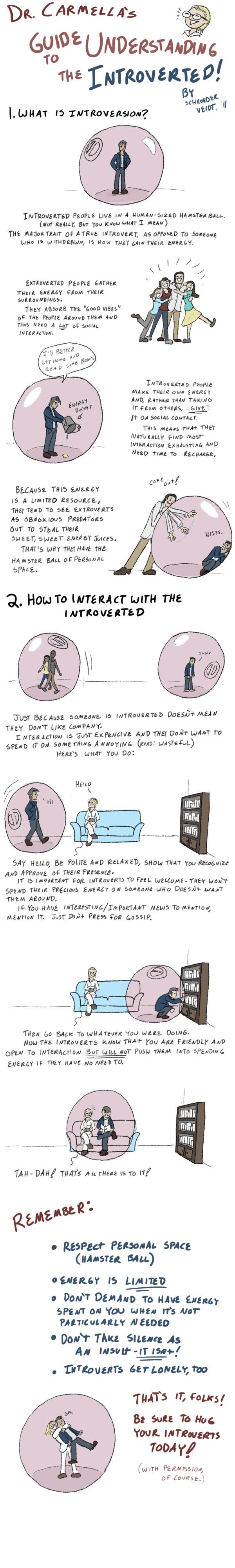 how to understand and get along with an introvert... your clientele (and friends) base will include some introverts for sure.