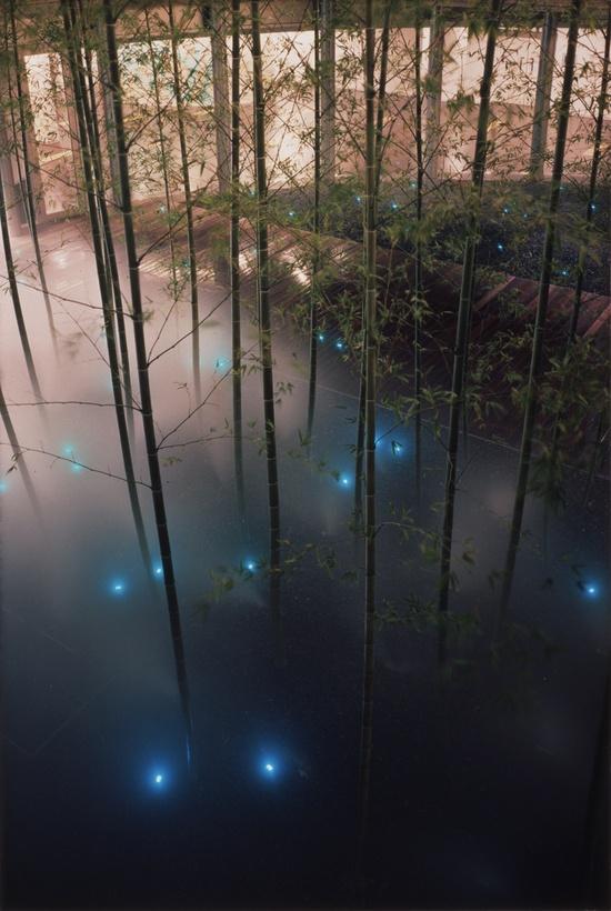 "SCAI THE BATHHOUSE|Projects|Tatsuo MIYAJIMA ""Time Garden"""