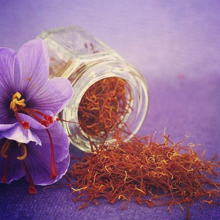 Saffron in stigmas  #safran #saffron #zafferano #stigmas #pistilli #pistils #seasoning #gourmet