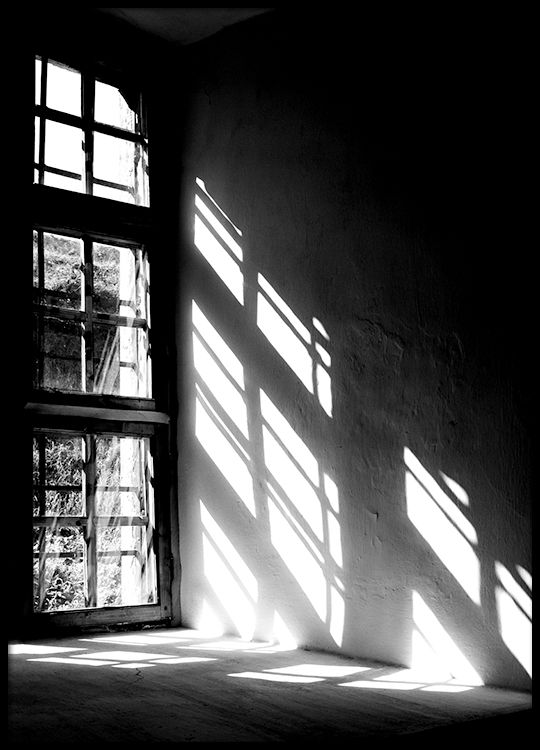 Let the light in, poster in the group Prints / Sizes / 70x100cm   28x39 at Desenio AB (8520)
