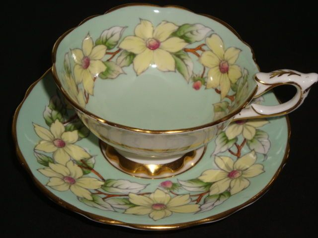 Royal Stafford DOG-WOOD on Minty Green Cup and Saucer ca.picclick.com