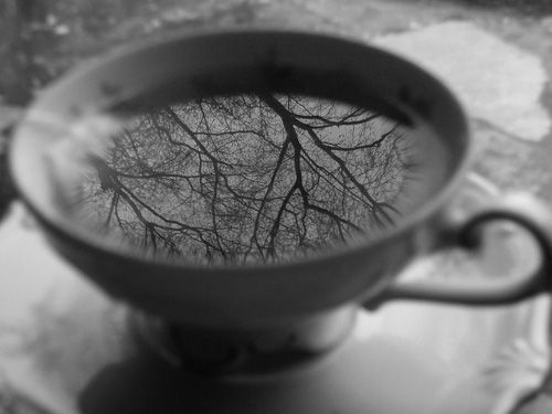 A cup of sky