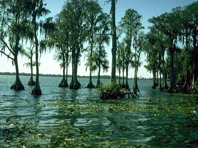 A wonderful lake