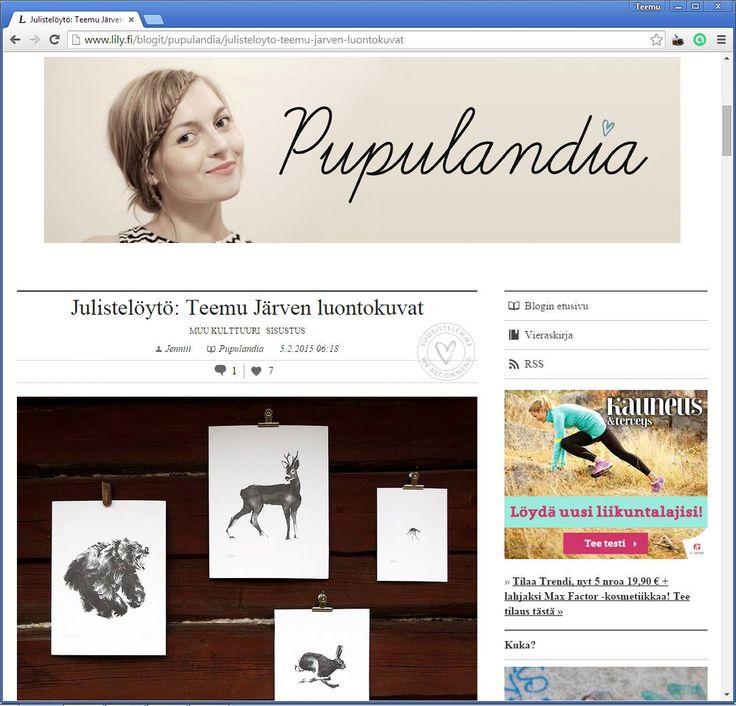 Julistelöytö blog post by Pupulandia http://www.lily.fi/blogit/pupulandia/julisteloyto-teemu-jarven-luontokuvat