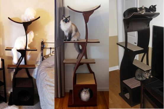 17 best images about cool cat furniture accessories on for Cool cat perches