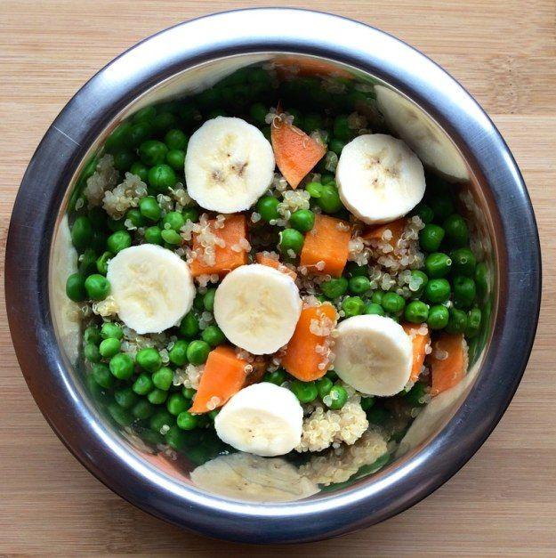 Sweet Potato, Pea, Quinoa & Banana | 10 Homemade Dog Food Recipes That Can Save You Money