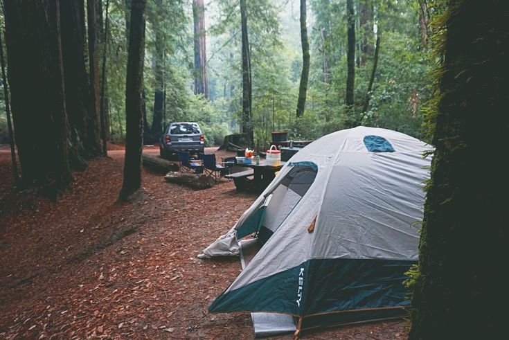 Hard to beat camping under the Redwoods - Big Basin Redwoods State Park http://ift.tt/2oHNCI0