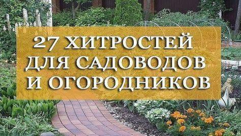 27 хитростей для садоводов и огородников   разное