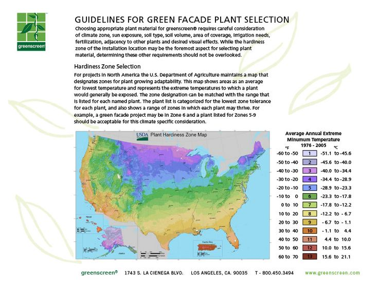 Guidelines For Plant Selection | greenscreen®