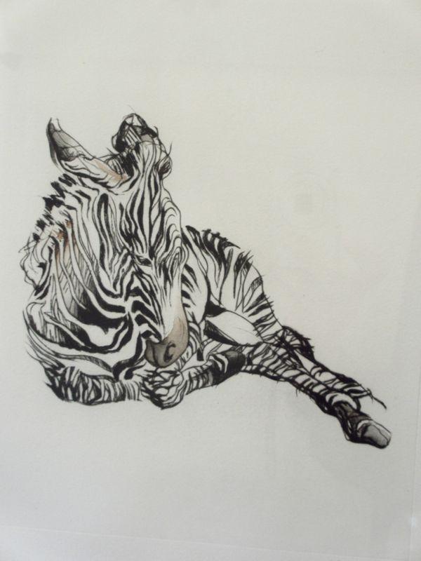 Droge naald met zebra veulen Melissa Halley