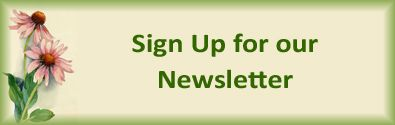 Sign up for our quarterly newsletter to receive product reviews, promotions and specials, tips on academics, fine arts, practical living, and more!