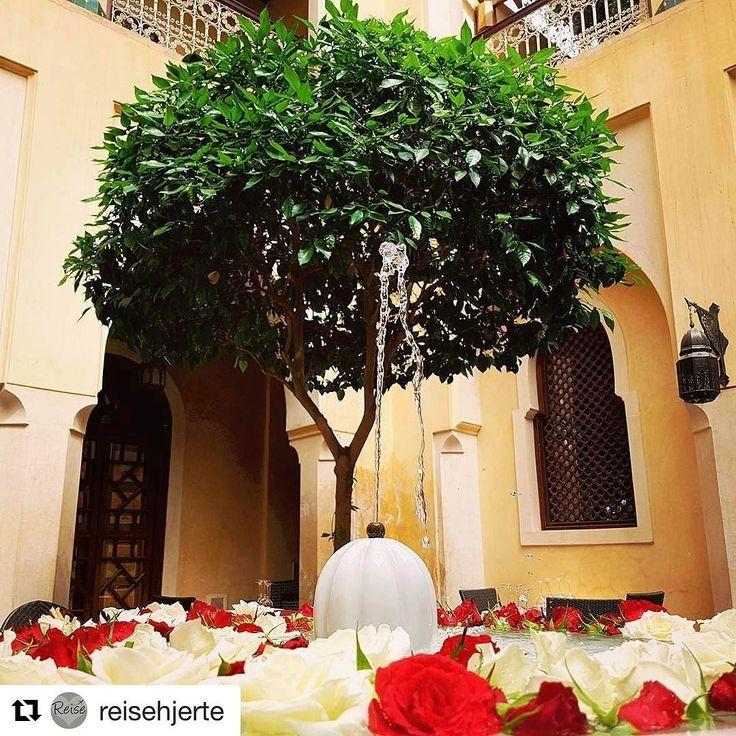 Riad er et tradisjonelt marokkansk hus som har en indre hage. #reisetips #reiseliv #reiseblogger #reiseråd  #Repost @reisehjerte with @repostapp  Riad garden in Marrakech  Det er så utrolig mange fine riader med koselige hager og fontener. Her spiste jeg lunsj for noen dager siden.  #riad #hage #fontene #pepenero #restaurant #marrakech #Marokko #reiseglede