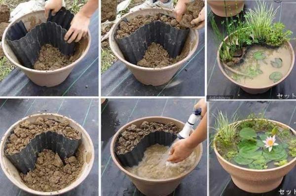 miniteich anlegen pflanzenkübel anleitung pflanzenauswahl