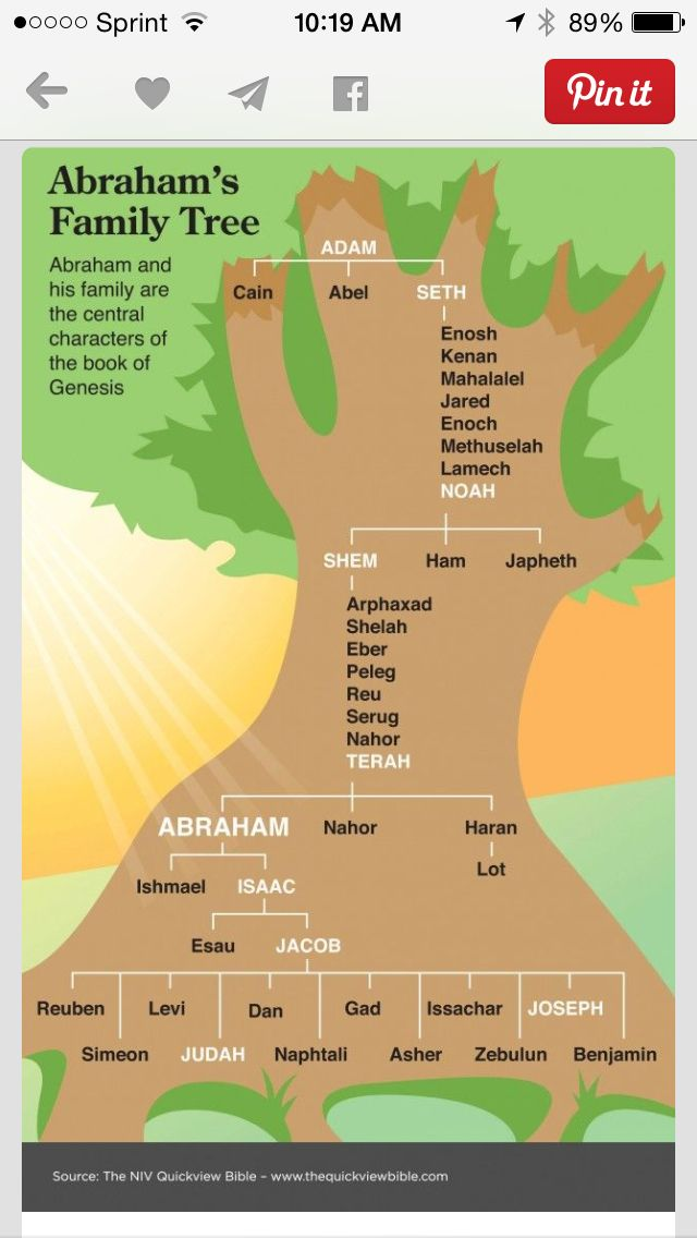The Quick View Bible Abrahamu0027s Family Tree