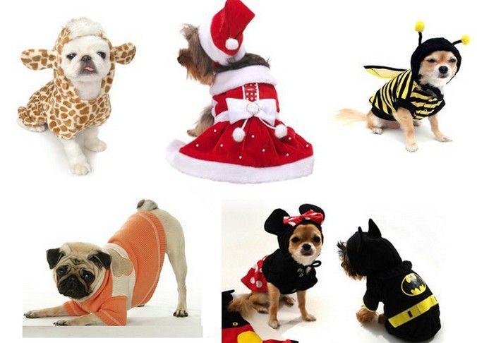 Roupa para cachorro - moldes e fotos
