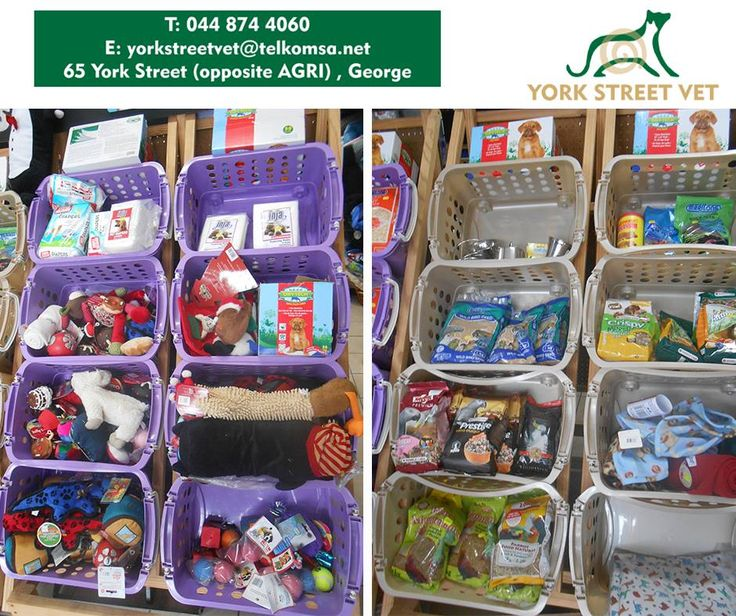 We have various specials on assorted pet products, from fish and bird food to doggie toys. Come around and have a look! #YorkStreetVets #specials #petproducts
