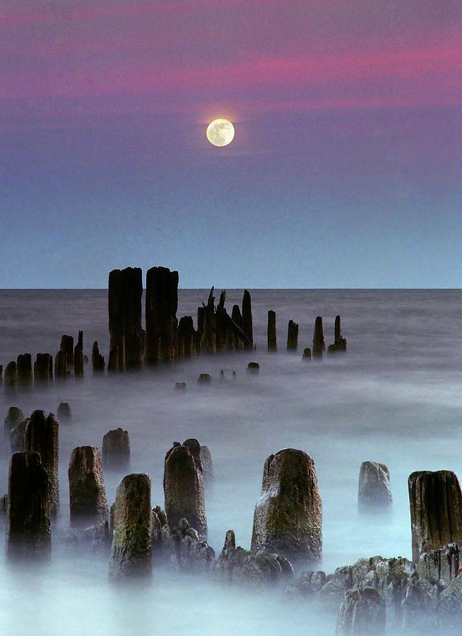The moon rises over Lake MichiganLake Michigan, Rolls Waves, Moon Rise, Moon, Waves Wash, Full Moon, Lakes Michigan, Artists Photography, The Moon