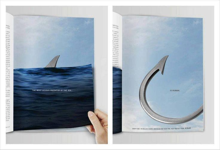 Campagnia contro il massacro degli squali