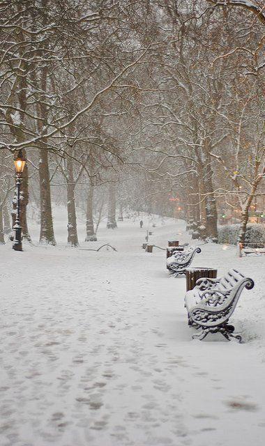 Green Park in Snow.. London