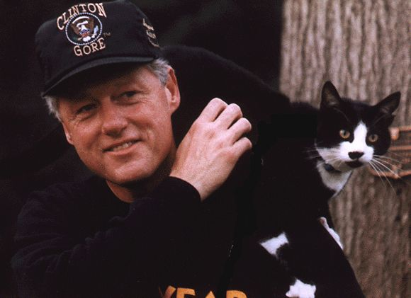 Bill Clinton with his cat Socks. | Eight Presidents With Cats