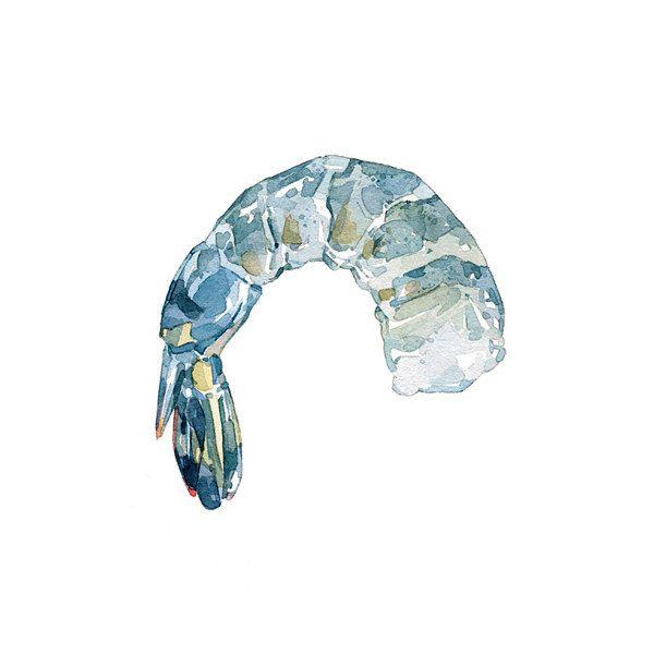 Aquarelle art nourriture crevettes imprimé par studiotuesday, $18.00