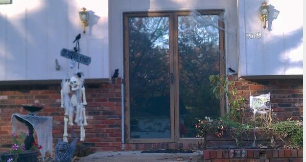 Painting The Metal Parts Of Glass Storm Doors | Hometalk