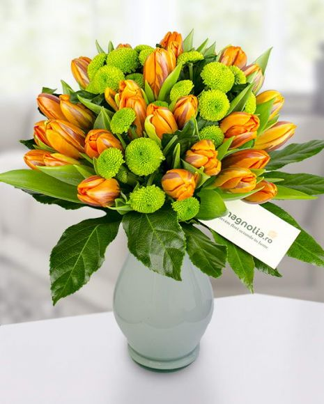 Buchet cu lalele portocalii si crizanteme verzi.   Orange tulip and green mums bouquet