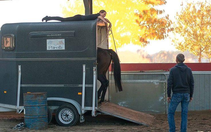 Doorzetten wordt beloond. In het begin kreeg ik mijn merrie Uppie met geen mogelijkheid in de trailer. Nu kan ik haar zelfs liggend op het dak aansturen om geheel zelfstandig de trailer in te lopen! #doorzetten#geduld#vertrouwen