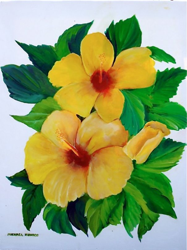 14 best hibiscus images on pinterest botanical art botanical amazing mouth painting artist ccuart Image collections