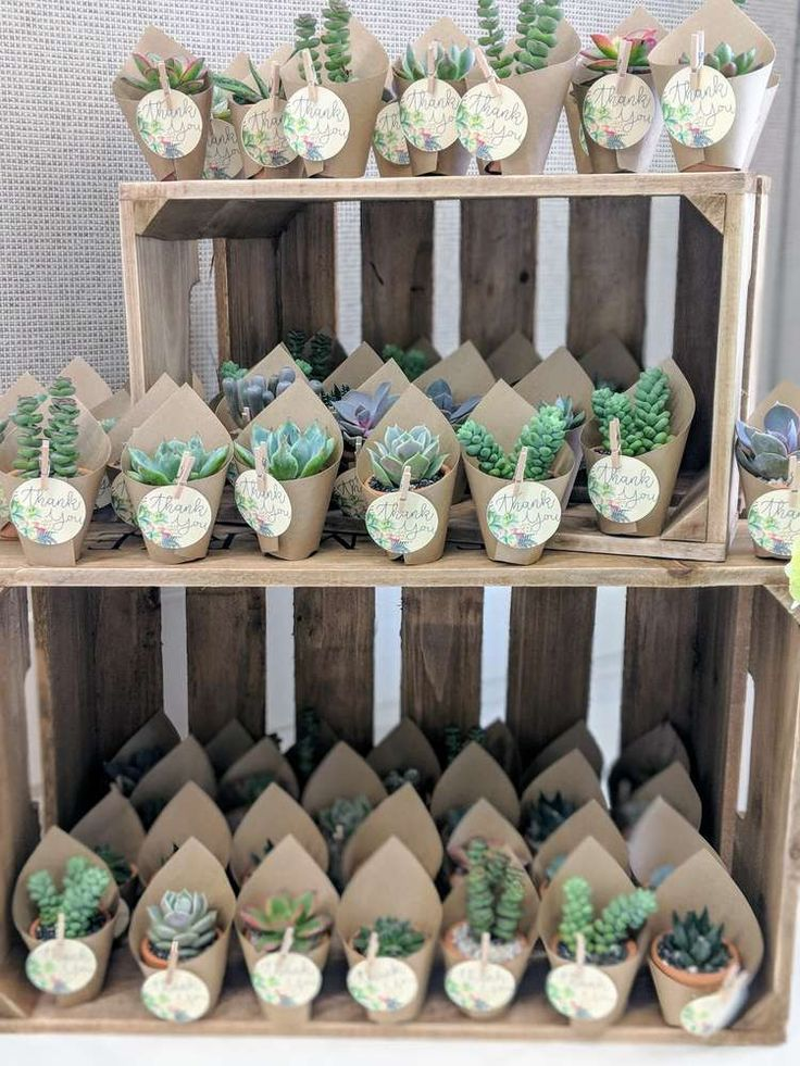The cactus party favors at this rustic boho baby shower are gorgeous! See  more …