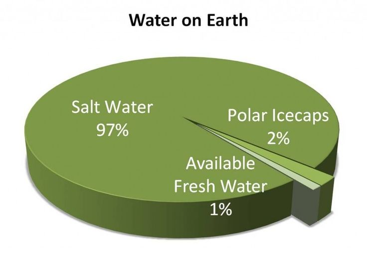Image result for water on earth pie chart