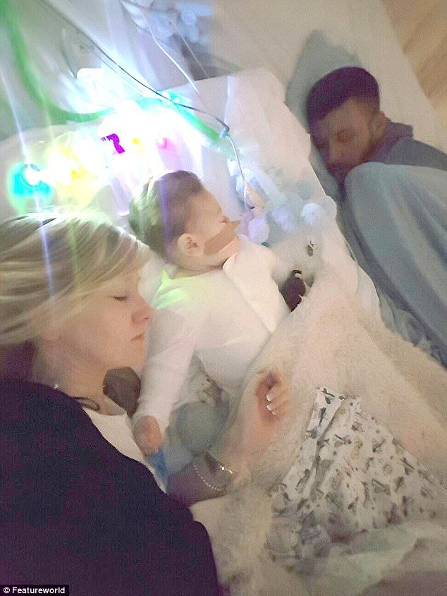 Charlie Gard lies between his parents Connie and Chris who have revealed that he will die on Friday but Great Ormond Street have denied their 'final wish' to take him home to pass away