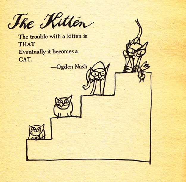 While the argument is sound, the drawings remain cute. | This 1963 Guide To Hating Cats Will Make You Like Them More