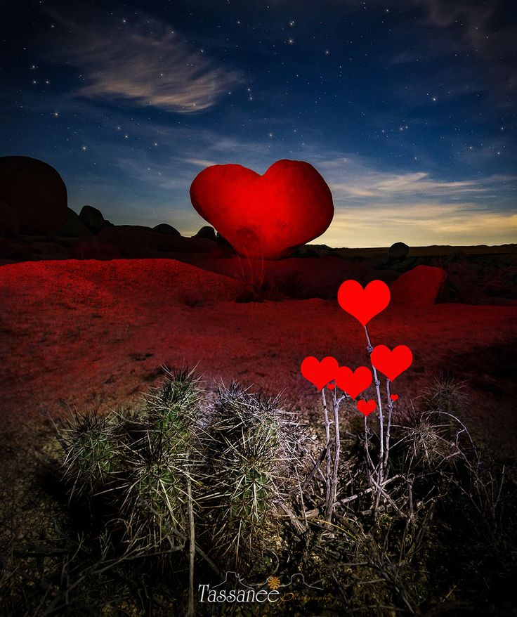 So Far Away - Happy Valentines Day from Heart Rock in Joshua Tree.