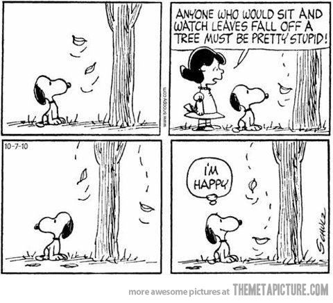 It's the simple things…got to love Snoopy!!!