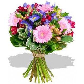 Ducesa ta merita sa ii fie recunoscute atuurile! Duchess -Buchet de frezii, irisi, gerbera si pittosporum - See more at: http://cityflowers.ro/buchete-de-flori/duchess-irisi-gerbera-frezii#sthash.5j7rGvT5.dpuf