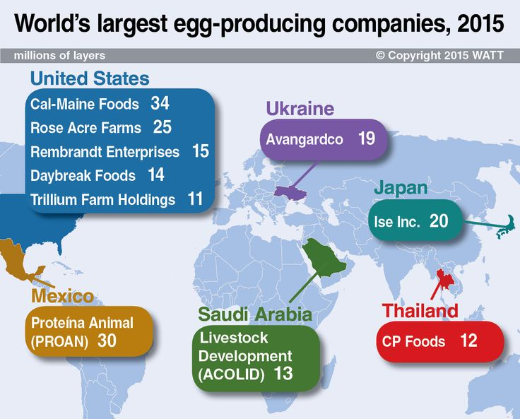 In 2015, the Top 10 egg-producing companies in the world were located in six countries: the United States, Ukraine, Mexico, Saudi Arabia, Japan and Thailand.
